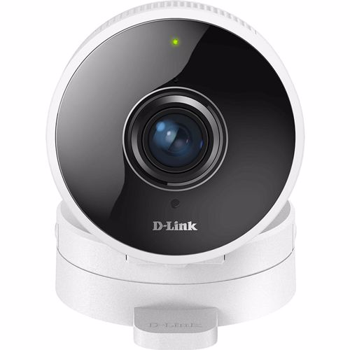 D-Link IP camera DCS-8100LH